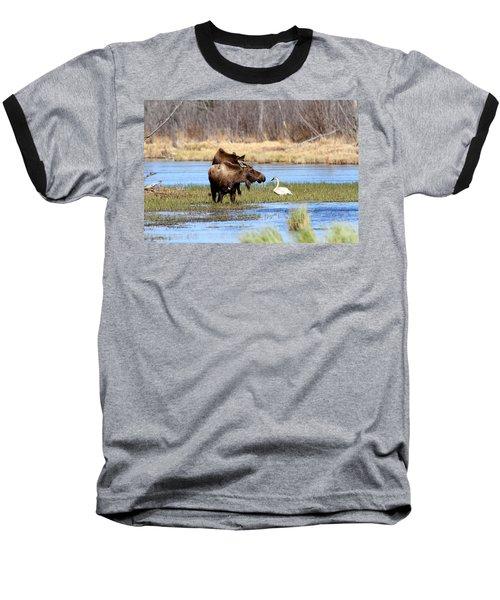 Strange Pond Fellows Baseball T-Shirt