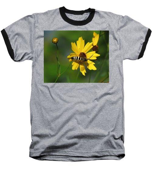Striped Bee On Wildflower Baseball T-Shirt