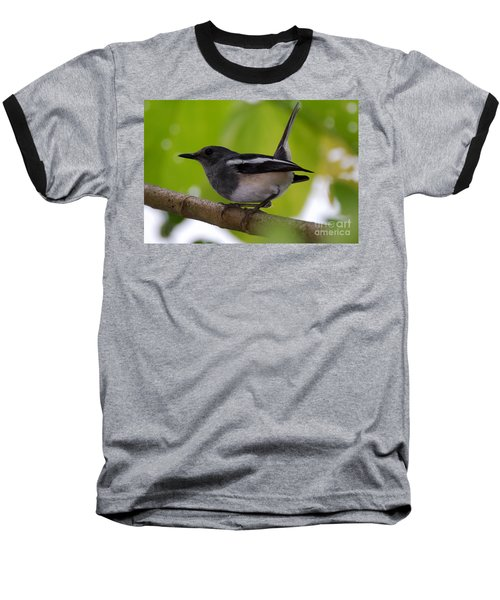Baseball T-Shirt featuring the photograph Study Of A Magpie-robin by Fotosas Photography