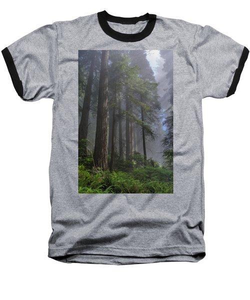 Sun Breaking On Redwoods Baseball T-Shirt