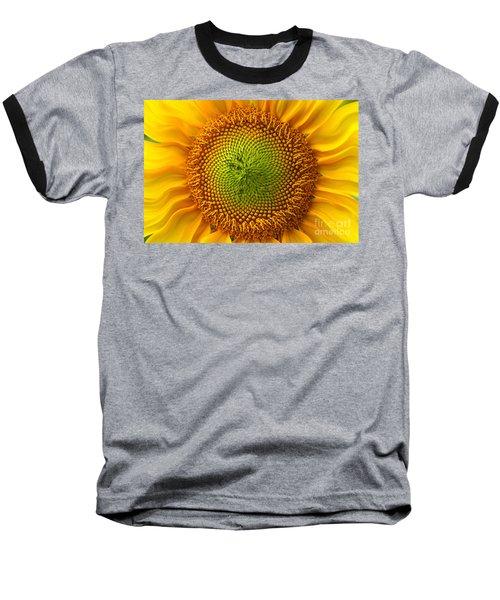 Sunflower Fantasy Baseball T-Shirt