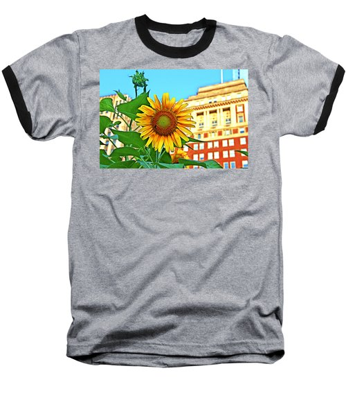 Baseball T-Shirt featuring the photograph Sunflower In The City by Alice Gipson