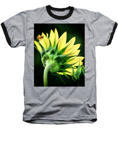 Sunflower With Bee Baseball T-Shirt by Lynne Jenkins