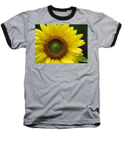 Baseball T-Shirt featuring the photograph Sunflower With Insect by Daniel Reed