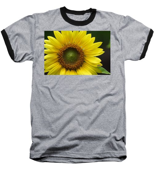Sunflower With Insect Baseball T-Shirt