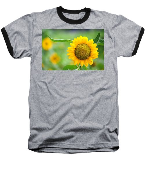 Sunflower Baseball T-Shirt by Yew Kwang