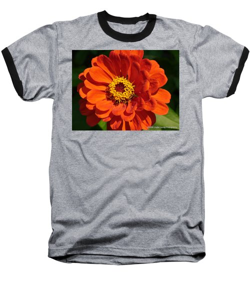 Baseball T-Shirt featuring the photograph Sunny Delight by Lingfai Leung