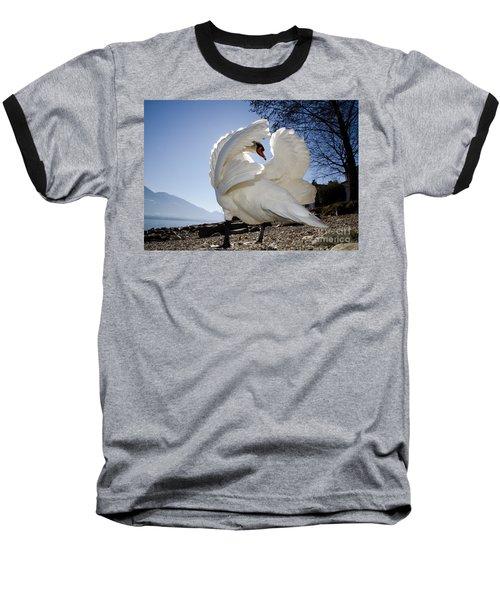 Swan In Backlight Baseball T-Shirt