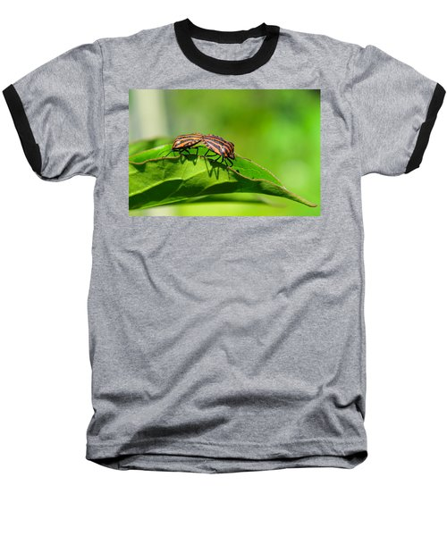 Symmetry Baseball T-Shirt