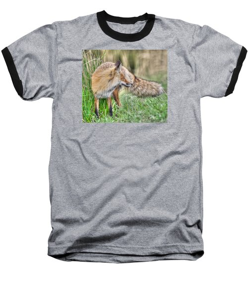 Tail Of The Fox Baseball T-Shirt by CR  Courson