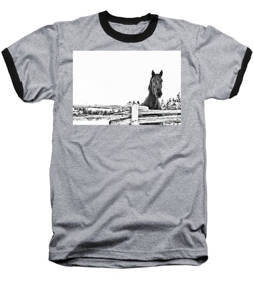 Take Me For A Ride Baseball T-Shirt by Traci Cottingham