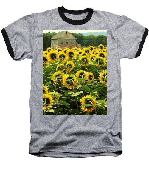 Tall Sunflowers Baseball T-Shirt