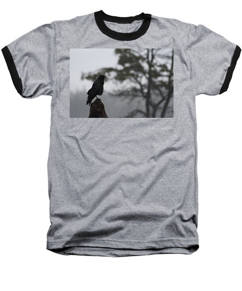 Baseball T-Shirt featuring the photograph The Bachelor by Cathie Douglas