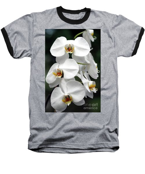 The Beauty Of Orchids  Baseball T-Shirt