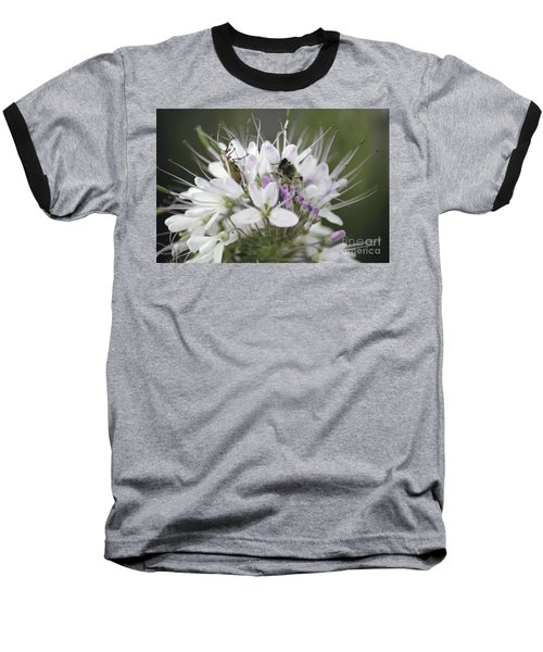 The Beetle And The Bee Baseball T-Shirt