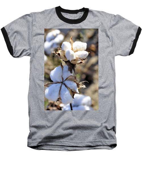 The Cotton Is Ready Baseball T-Shirt by Jan Amiss Photography
