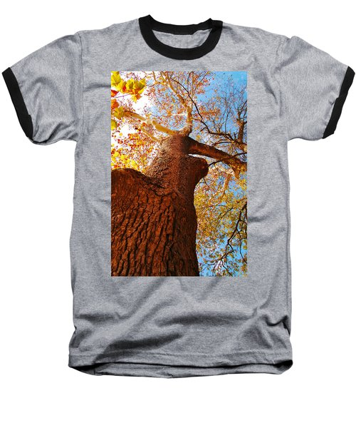 Baseball T-Shirt featuring the photograph The Deer  Autumn Leaves Tree by Peggy Franz