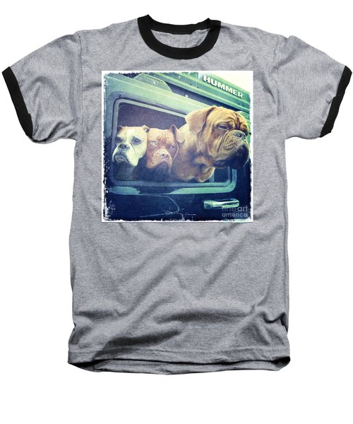 The Dog Taxi Is A Hummer Baseball T-Shirt