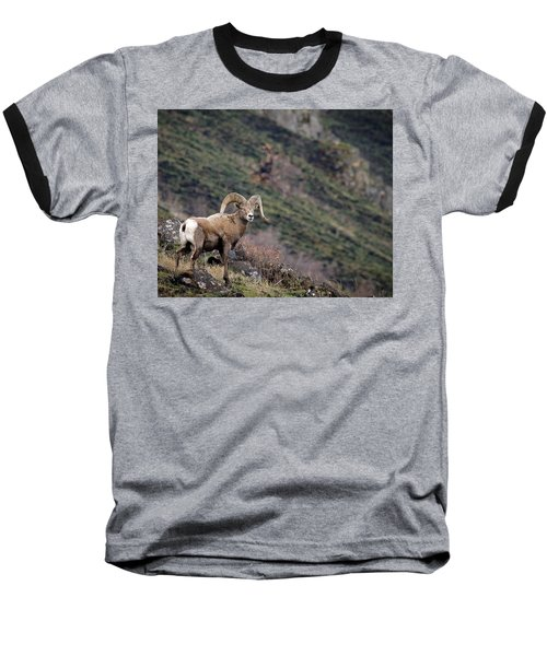 Baseball T-Shirt featuring the photograph The Overlook by Steve McKinzie
