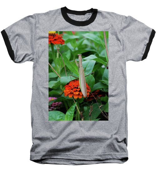 Baseball T-Shirt featuring the photograph The Patience Of A Mantis by Thomas Woolworth