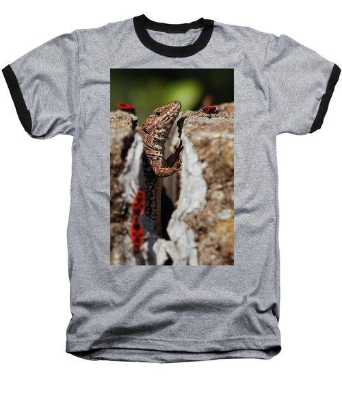 Baseball T-Shirt featuring the photograph the random Lizard  by Stwayne Keubrick