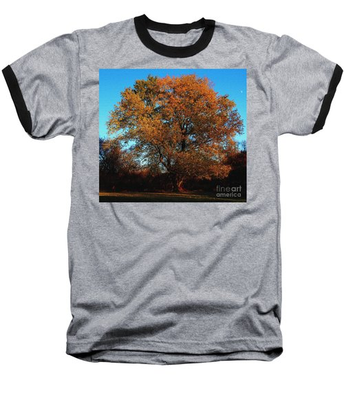 The Tree Of Life Baseball T-Shirt by Davandra Cribbie