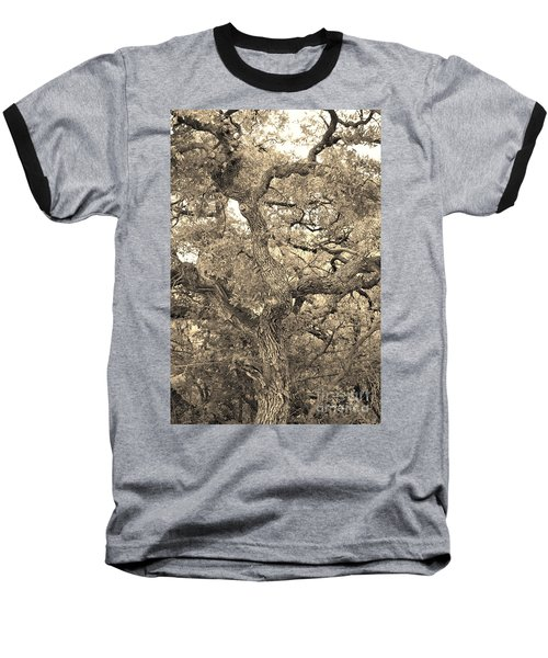The Wicked Tree Baseball T-Shirt