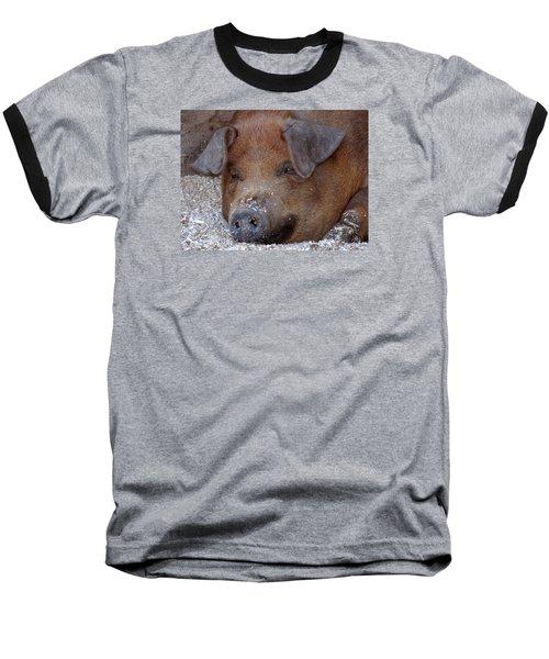 This Little Piggy Took A Nap Baseball T-Shirt