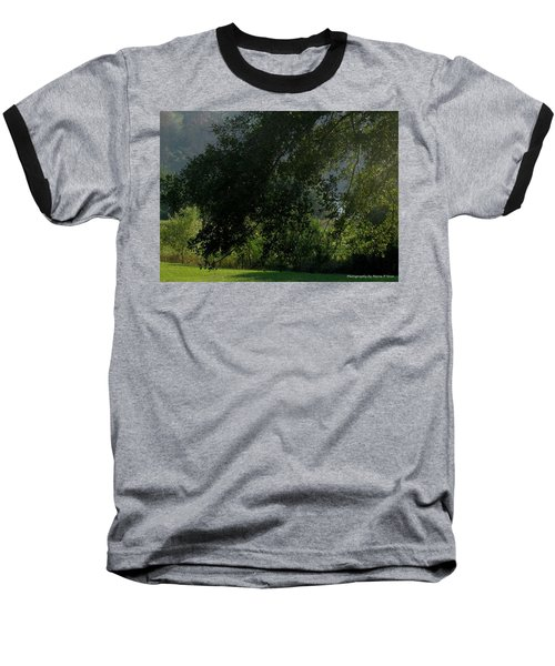 Baseball T-Shirt featuring the photograph This Ole Tree by Maria Urso