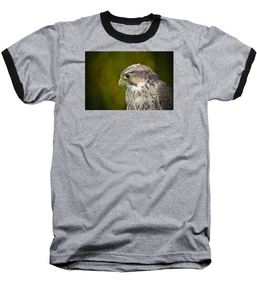 Thoughtful Kestrel Baseball T-Shirt