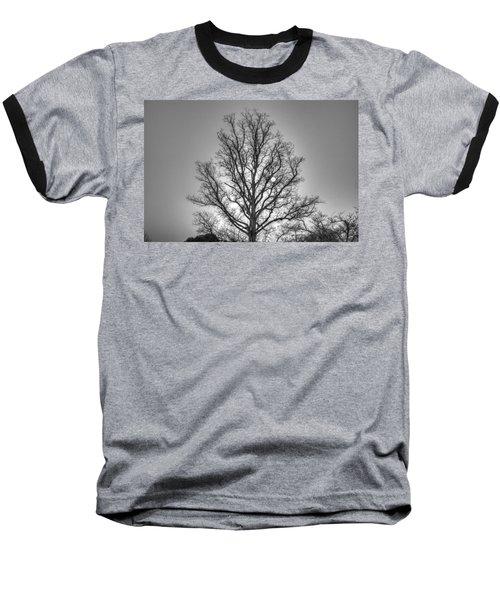 Through The Boughs Bw Baseball T-Shirt by Dan Stone