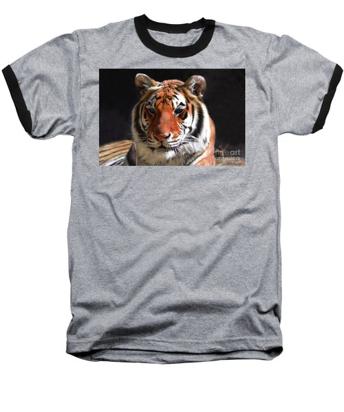 Tiger Blue Eyes Baseball T-Shirt by Rebecca Margraf