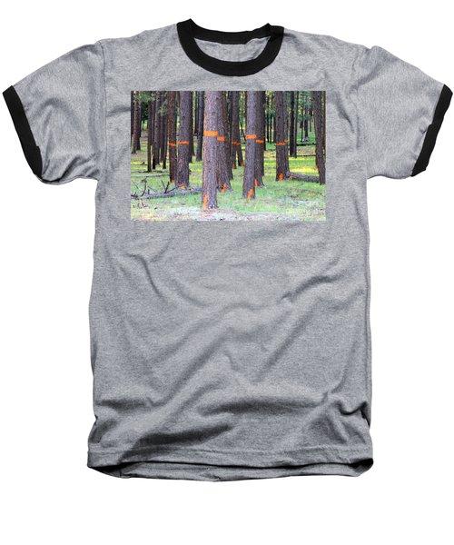 Timber Marking Baseball T-Shirt by Pamela Walrath