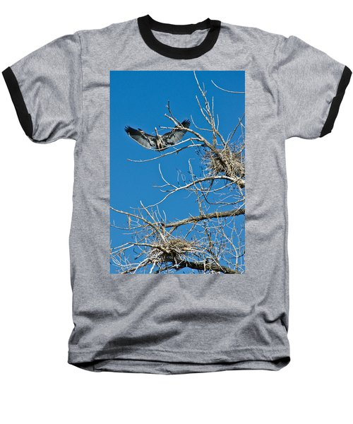 Time To Nest Baseball T-Shirt