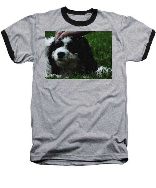 Baseball T-Shirt featuring the photograph TLC by Lydia Holly