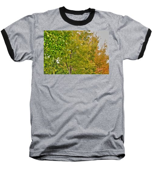 Baseball T-Shirt featuring the photograph Transition Of Autumn Color by Michael Frank Jr
