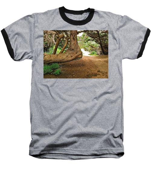 Baseball T-Shirt featuring the photograph Tree And Trail by Bill Owen