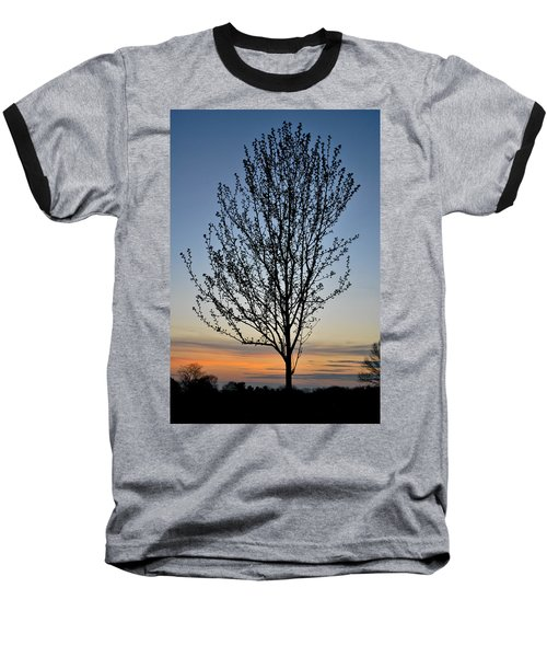 Tree At Sunset Baseball T-Shirt