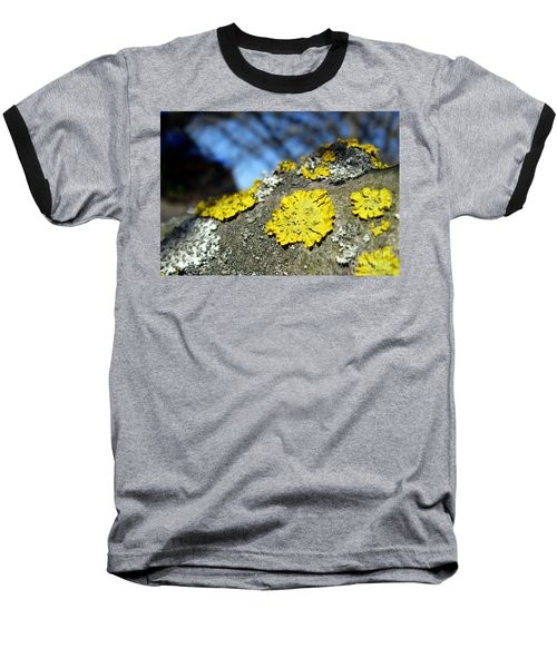 Baseball T-Shirt featuring the photograph Tree Lichen by Ausra Huntington nee Paulauskaite