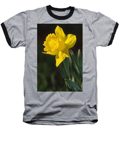 Trumpeting Daffodil Baseball T-Shirt