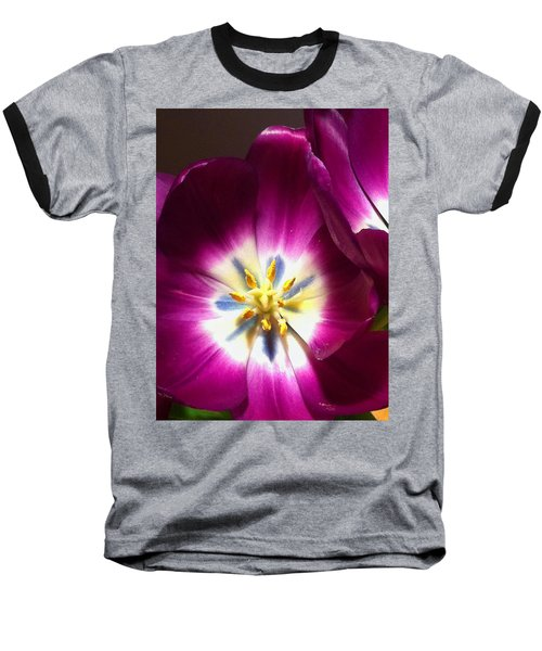 Tulip Overture Baseball T-Shirt