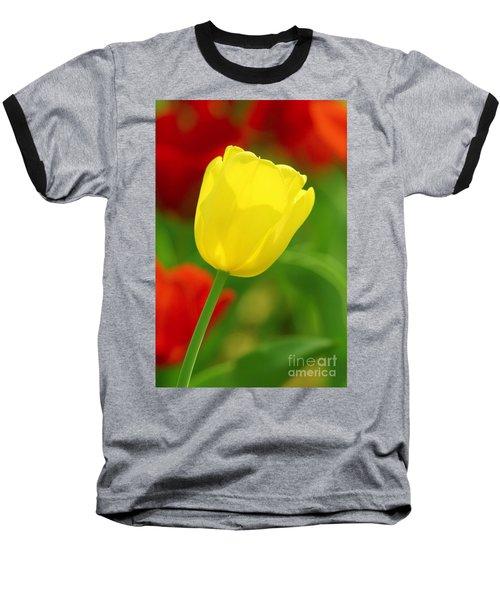 Tulipan Amarillo Baseball T-Shirt