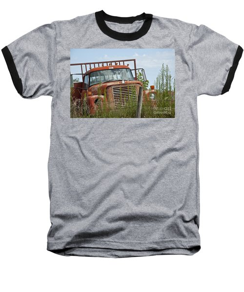 Turned Out To Pasture Baseball T-Shirt by Wilma  Birdwell