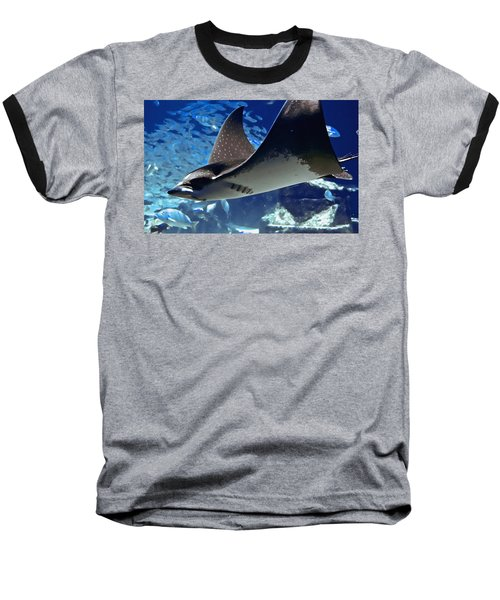Underwater Flight Baseball T-Shirt