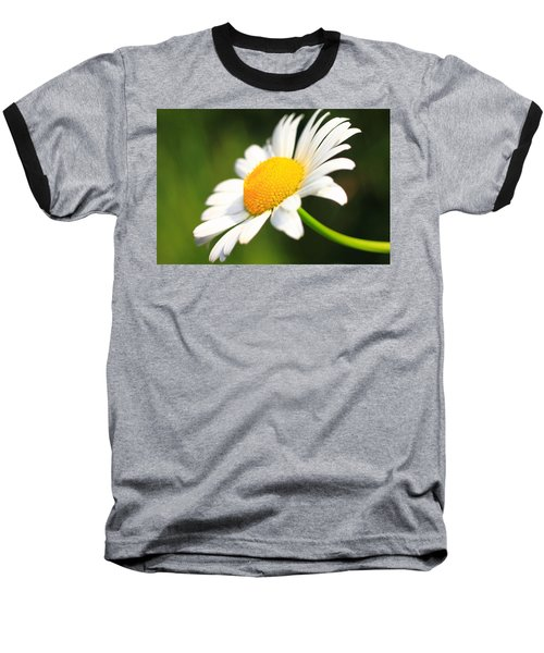 Upturned Daisy Baseball T-Shirt