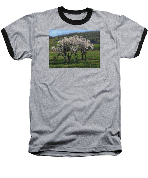 Valley Plum Thicket Baseball T-Shirt by Bruce Morrison