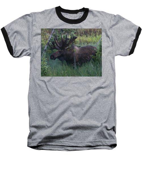 Baseball T-Shirt featuring the photograph Velvet by Doug Lloyd