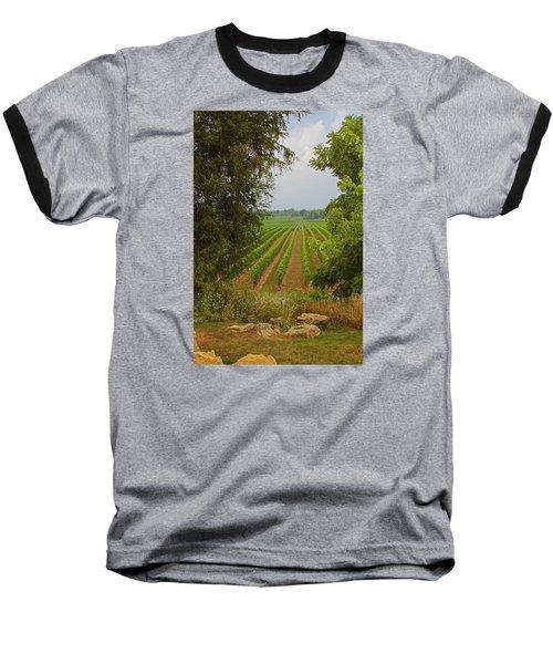 Vineyard On The Bench Baseball T-Shirt by John Stuart Webbstock