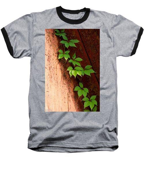 Vitis Baseball T-Shirt
