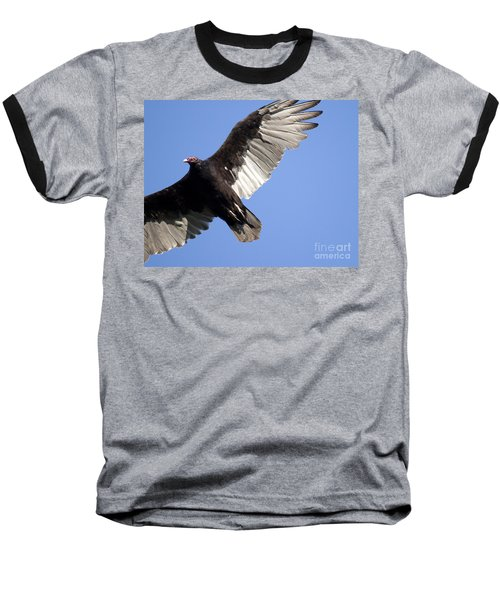 Baseball T-Shirt featuring the photograph Vulture by Jeannette Hunt